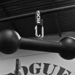 Dog Bone Pull-up Bar